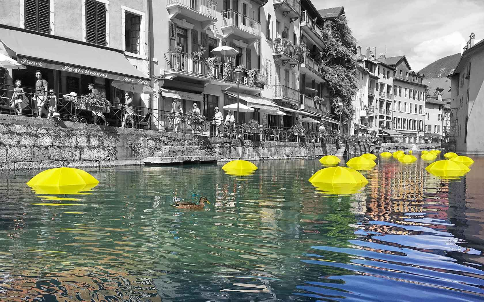 Floating Flowers – Thiou river, Annecy
